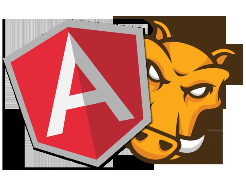 https://assist-software.net/Angular%20Image