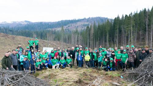 ASSIST Software planting trees in Moldovita - promoted picture