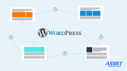 How to use and extend the WordPress REST API - Iacob Frunze ASSIST Software - Promoted image